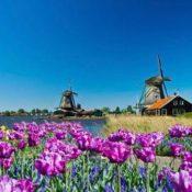 Nizozemska, Amsterdam-polja tulipana-Delft-Den Haag-Utrecht, putovanje autobusom iz Pule, Pazina i Rijeke, 6 dana / 5 noćenja