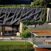 Nova arhitektura vina – Team building program – vinarije Kozlović i Roxanich