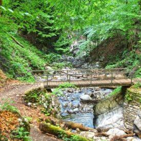 Kamačnik, Gorski kotar