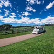 Brijuni Island National Park, half day excursion by bus from Banjole, Medulin, Pula